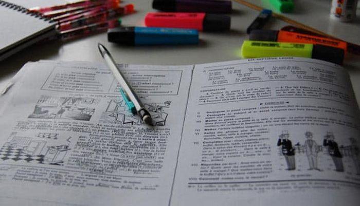 Estudar para o Encceja